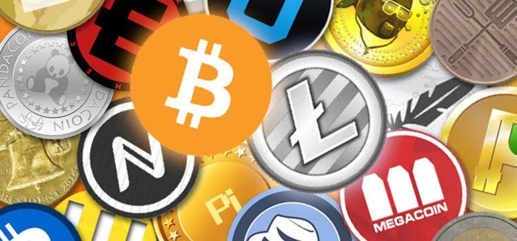 Altcoins Crashing Hard Despite The Plunging Bitcoin