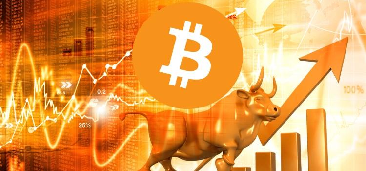 btc-bull coinsfera.com