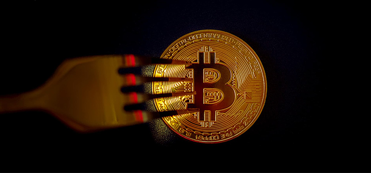 Bitcoin Price Rises To $ 16,000 As The Market Turns Into Extreme Greed