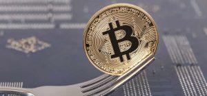 btc-fork coinsfera.com