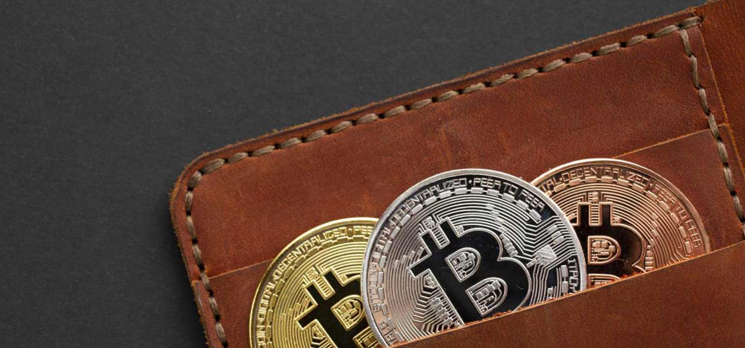 What are the Types of Cryptocurrency Wallets? How to Store Bitcoin?
