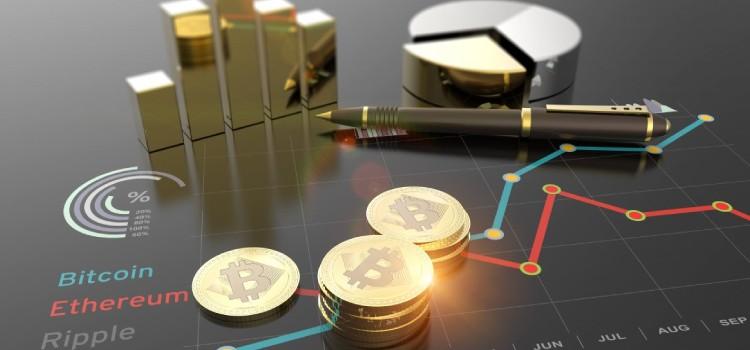 investment coinsfera.com