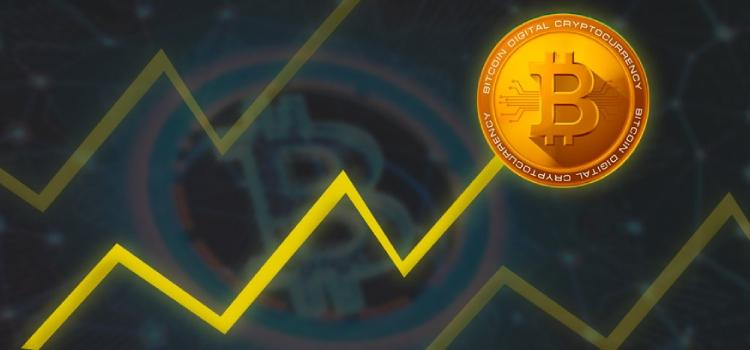 bitcoin-rise coinsfera.com