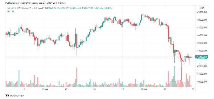 Bitcoin Price Chart coinsfera.com